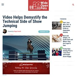 Video Helps Demystify the Technical Side of Show Jumping