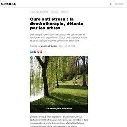 Cure anti stress : la dendrothérapie, détente par les arbres