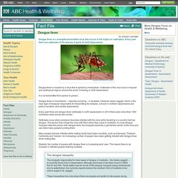 Dengue fever - Health & Wellbeing