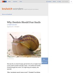 Why Dentists Should Fear Snails : Krulwich Wonders...