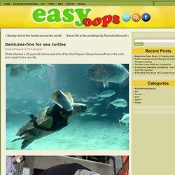 Dentures-fins for sea turtles