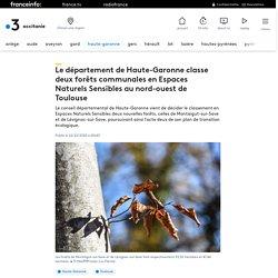 Le département de Haute-Garonne classe deux forêts communales en Espaces Naturels Sensibles au nord-ouest de Toulouse