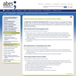 Département des Systèmes d'Information (DSI) – Organigrammes – Connaître l'ABES