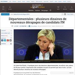 Départementales : plusieurs dizaines de nouveaux dérapages de candidats FN