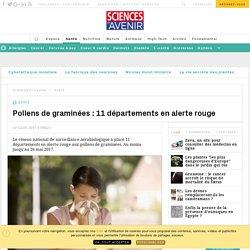 Pollens de graminées : 11 départements en alerte rouge - Sciencesetavenir.fr
