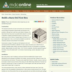 Build a Barn Owl Nest Box