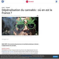 Dépénalisation du cannabis : où en est la France ?