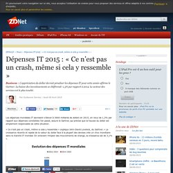 09/04/15 - Dépenses IT 2015 : « Ce n'est pas un crash, même si cela y ressemble »