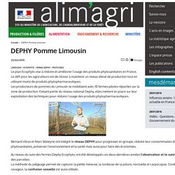 MAAF 23/03/15 DEPHY Pomme Limousin