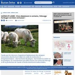 SAÔNE-ET-LOIRE : N'en déplaisent à certains, l'élevage herbager est bien vertueux!