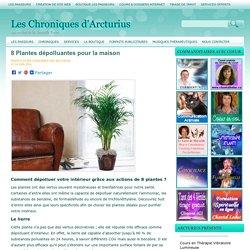 8 Plantes dépolluantes pour la maison Les Chroniques d'Arcturius
