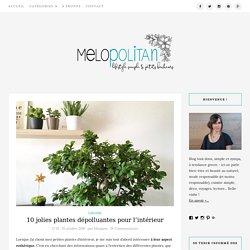 10 jolies plantes dépolluantes pour l'intérieur