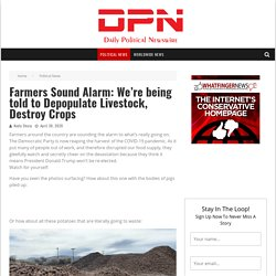 Farmers Sound Alarm: We're being told to Depopulate Livestock, Destroy Crops - Daily Political Newswire