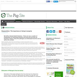 PIGSITE 19/02/05 Depopulation: The importance of doing it properly