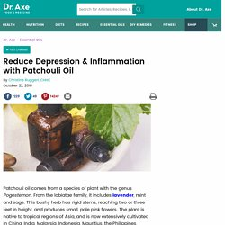 Reduce Depression & Inflammation with Patchouli Oil - Dr. Axe