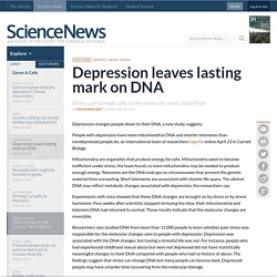 Depression leaves lasting mark on DNA
