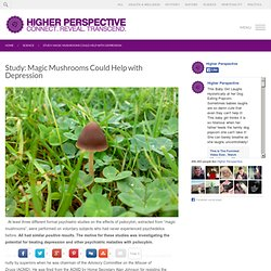 Study: Magic Mushrooms Could Help with Depression