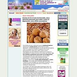 Graines de lin et noix de Grenoble, deux aliments puissants pour lutter contre la dépression, sans effets secondaires