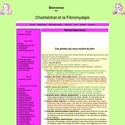 Plantes Dépuratives - Chantalchat et la Fibromyalgie