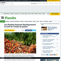 Les députés baissent drastiquement la taxe de l'huile de palme