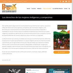 Los derechos de las mujeres indígenas y campesinas – Centro Prodh