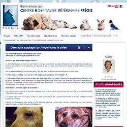 Dermatite atopique (ou Atopie) chez le chien