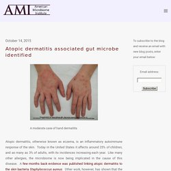 Atopic dermatitis associated gut microbe identified — The American Microbiome Institute