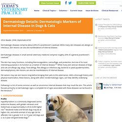 Dermatology Details: Dermatologic Markers of Internal Disease in Dogs & Cats - Today's Veterinary Practice