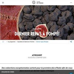 Musée de l'Homme : Dernier repas à Pompéi