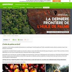 Afrique : la dernière frontière de l'huile de palme