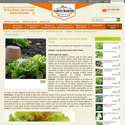 Salades : Les derniers semis avant l'hiver, Les légumes de Xavier, Chronique au jardin, Conseils et Idées