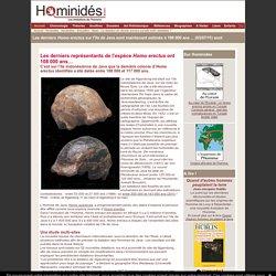 Les derniers Homo erectus retrouvés à Java il ya 108 000 ans