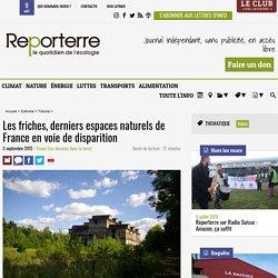 Les friches, derniers espaces naturels de France en voie de disparition. Yoann. Reporterre. www.reporterre.net