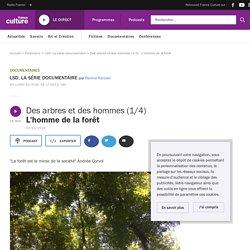 FRANCE CULTURE 03/12/18 LA SERIE DOCUMENTAIRE - Des arbres et des hommes (1/4) L'homme de la forêt
