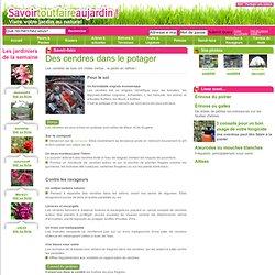 Recycler les cendres ! - Amélioration du sol - Savoir-faire - Vivre votre jardin au naturel avec savoirtoutfaireaujardin.com
