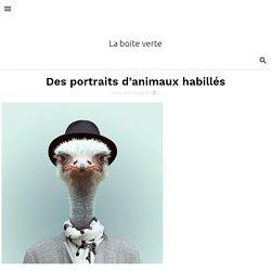 Des portraits d'animaux habillés