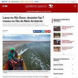 Lama no Rio Doce: desastre faz 7 meses no Dia do Meio Ambiente - notícias em Desastre ambiental no Rio Doce