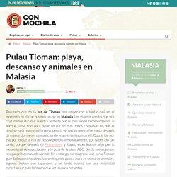 Pulau Tioman: playa, descanso y animales en Malasia
