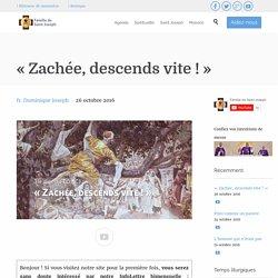 « Zachée, descends vite ! » - Homélie de la Famille de Saint Joseph