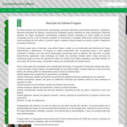 Crescendo em Cultura: Descrição de Colônias Fúngicas
