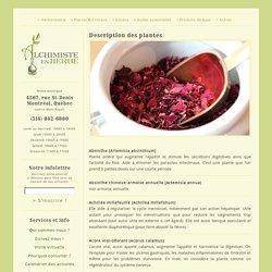 Description des plantes « Alchimiste En Herbe – Herboristerie Montréal