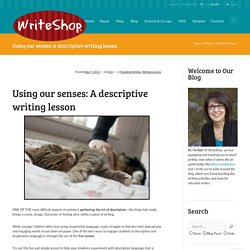 Using our senses: A descriptive writing lesson - WriteShop