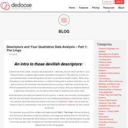 Descriptors and Your Qualitative Data Analysis – Part 1: The Lingo Blog