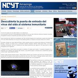 Descubierta la puerta de entrada del virus del sida al sistema inmunitario