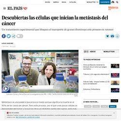 CANCER: Descubiertas las células que inician la metástasis del cáncer