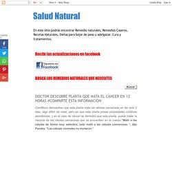 Salud Natural: DOCTOR DESCUBRE PLANTA QUE MATA EL CANCER EN 12 HORAS #COMPARTE ESTA INFORMACION