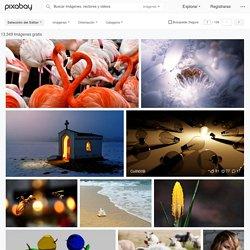 Descubre y descarga imágenes gratis · Pixabay