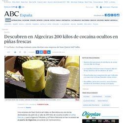 Descubren en Algeciras 200 kilos de cocaína ocultos en piñas frescas