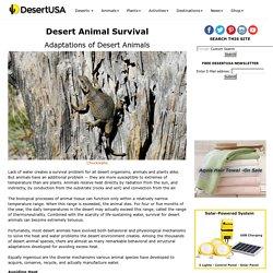 Desert Animal Survival