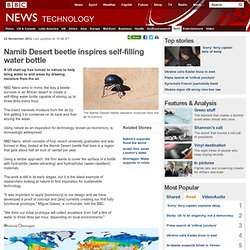Namib Desert beetle inspires self-filling water bottle